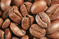 Free Coffee Beans Royalty Free Stock Image - 25371536