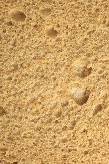 Bread Texture Stock Image