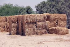 Free Bales Of Straw. Stock Photography - 25372112