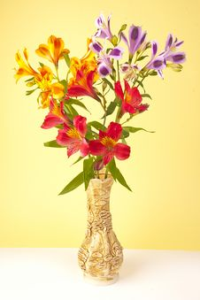 Free Bouquet In A Vase Stock Photos - 25377813