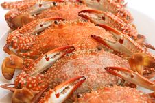 Free Red Crabs Royalty Free Stock Image - 25383186