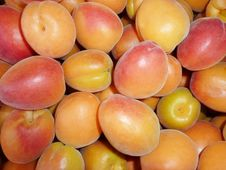 Free Ripe Apricots Stock Photography - 25389592