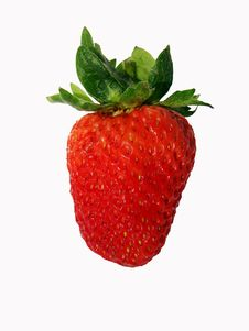 Free Strawberry Stock Images - 2541854