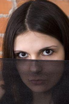 Hiding Behing The Veil Stock Photos