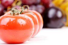 Free Tomato Row Royalty Free Stock Photos - 2545388