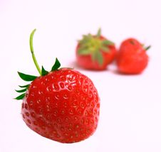 Free Strawberries Royalty Free Stock Photo - 2546525