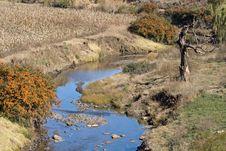 Free River Border Stock Photography - 2549732