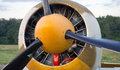 Free Propeller Royalty Free Stock Photography - 25407077