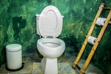 Free Flush Toilet Stock Photo - 25404950