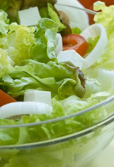 Salad - Appetizer Stock Photos