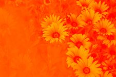 Free Bright Floral Background Stock Photo - 25410550