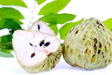 Free Fresh Custard Apple Royalty Free Stock Photos - 25414018