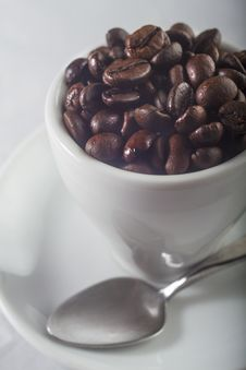 Free Coffee Stock Images - 25419954