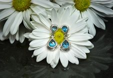 Free Blue Topaz Earrings With White Gerbera Daisies Royalty Free Stock Photo - 25424075