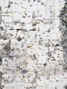 Free Texture Of Stone Wall Royalty Free Stock Images - 25433569