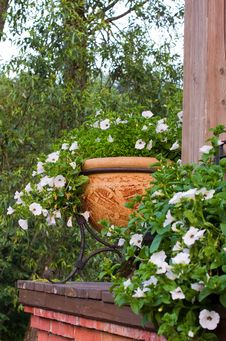 Free Garden Royalty Free Stock Image - 25456866