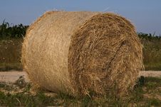 Free Bales Of Hay Stock Photo - 25471080
