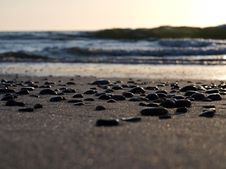 Free Pebbles On The Sea Shore Stock Image - 25476051