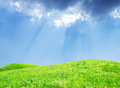 Free Grass And Perfect Sky Royalty Free Stock Image - 25487986