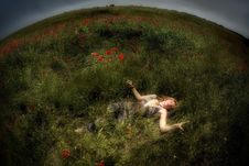 Girl And Poppies Royalty Free Stock Photos