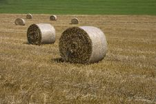 Free Dry Grass In A Package Stock Images - 25485504