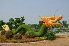 Free Dragon Stock Photos - 25486883