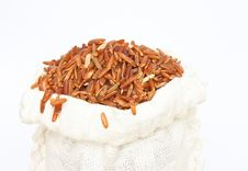 Free Wide Rice Stock Photography - 25493222