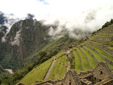 Free Residential And The Field Section Of Machu Picchu Stock Image - 25493561