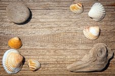 Free Seashells Border Royalty Free Stock Image - 25494526