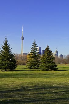 Toronto Skyline From Park Stock Images