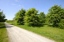 Free Nature Stock Photos - 2555143