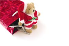 Free Teddy And A Gift Bag Stock Photography - 2555602