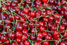 Free Cherries Royalty Free Stock Images - 2555759