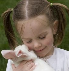 Free Girl And A Bunny Stock Images - 2557314