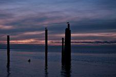 Free Beach At Night-horizontal Royalty Free Stock Photography - 2557447