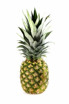 Free Pineapple Isolated On White Stock Image - 2559531