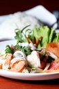 Free Shrimp, Squid Salad Mixed. Royalty Free Stock Images - 25510879