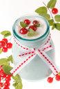 Free Redcurrant Yoghurt Royalty Free Stock Images - 25514589