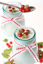 Free Redcurrant Yoghurt Stock Photos - 25514613