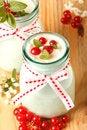 Free Redcurrant Yoghurt Stock Photography - 25514632
