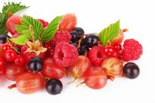 Free Mix Berries Stock Image - 25510631