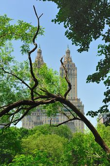 Free New York - Central Park Royalty Free Stock Photos - 25513028