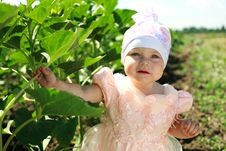 Little Child Walking In Green Field Stock Photography