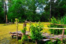 The Old Wooden Bridge On The Bank Royalty Free Stock Image