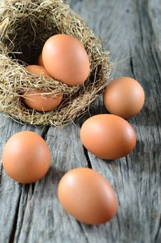 Free Colorful Eggs Stock Image - 25527101