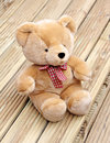 Free Lonely Bear Solitude Stock Photo - 25538160
