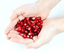 Free Children S Hands And Pomegranate Royalty Free Stock Image - 25533416