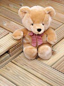 Free Bear Wood...lovely! Royalty Free Stock Photo - 25537505