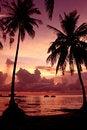 Free Sunset Scene On The Sea Royalty Free Stock Photos - 25540638