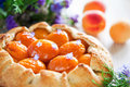 Free Tart With Apricots Royalty Free Stock Photography - 25555347
